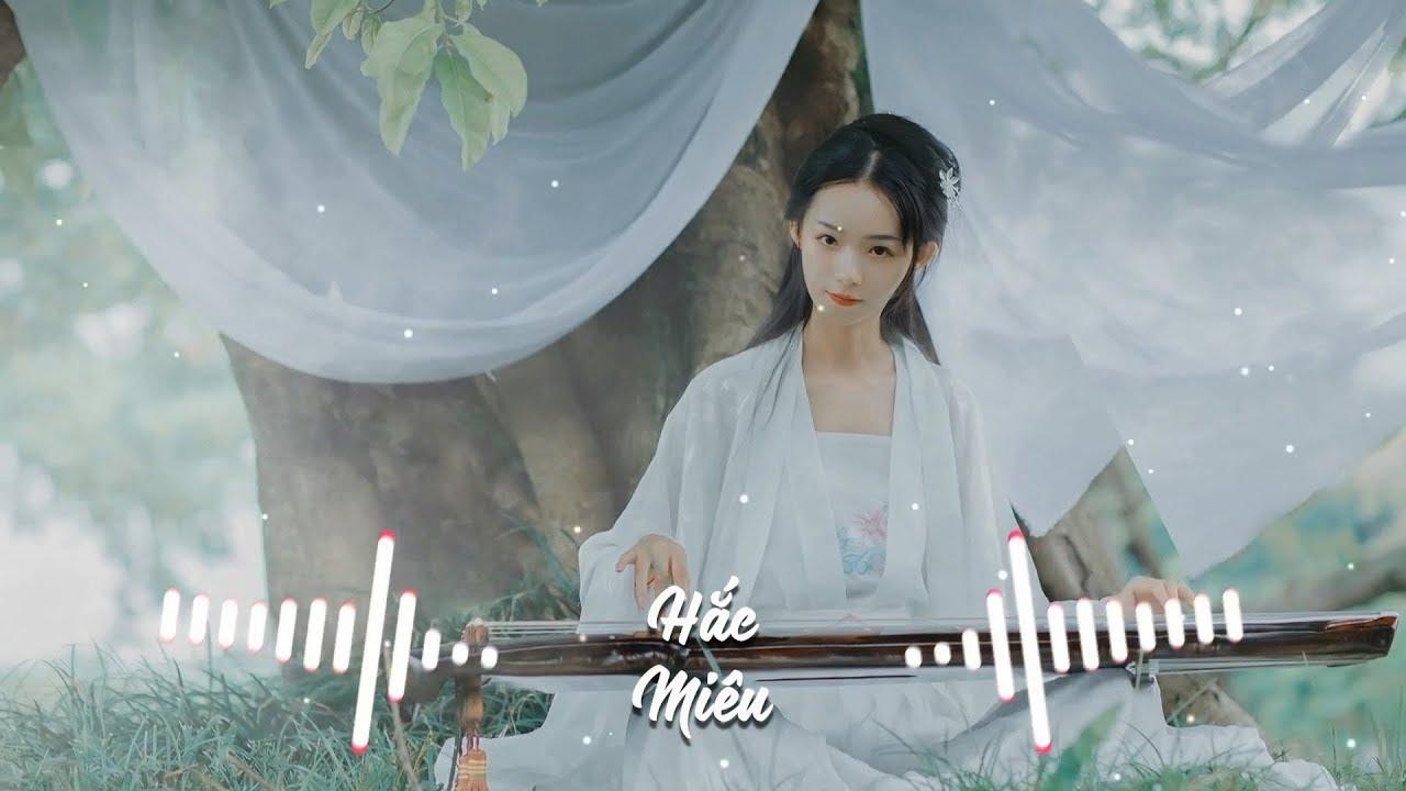 TikTok Remix) Cô Phương Tự Thưởng - Dương Tiểu Tráng - YouTube